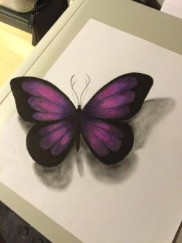 Butterfly  by Drawlover