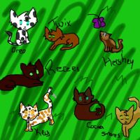 Kits Playing: Contest Entry by Alysaya