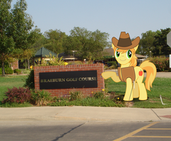 Braeburn at WSU by MillenniumFalsehood
