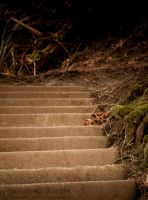 5000 Steps to the top by Zaralith