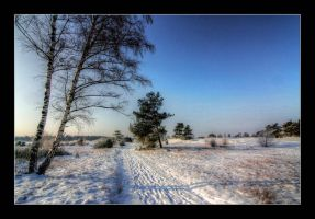 winter3 by 21711