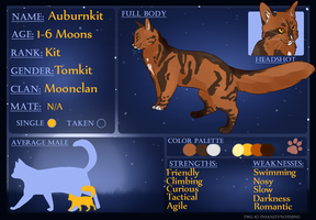 Auburnkit's Application by TimidCute