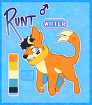 Runt ref (Pokesona) by Toxic-Justice
