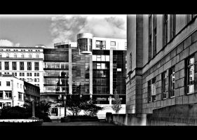 a slice of the city by awjay
