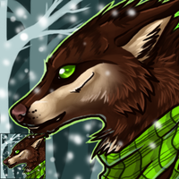 2012 Winter Icon by midelaye