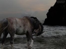 Ocean Smell by RemorseHP