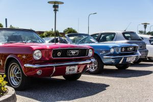 1966 Mustangs by WillyEpp