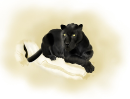 Panther by Alisha-town