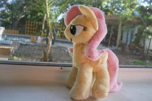 Fluttershy Plush by LordBoop