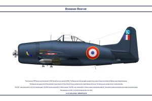 Bearcat France 2 by WS-Clave
