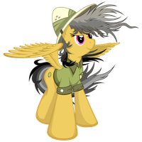 Daring Do - Windy Perspective by flamevulture17