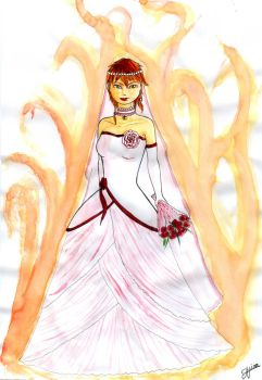 Here comes the bride by darkarisa