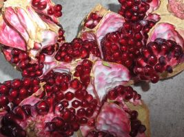 pomegranate 12 by voider00