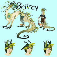 Briirey Character Design by tuliplou