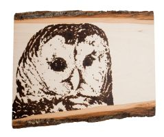 Barred Owl Woodburning by EdgedFeather