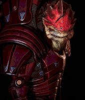 Wrex2 by wargaron