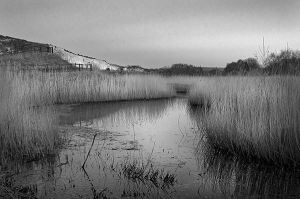 Cliffe 2741 by filmwaster