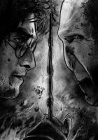 Harry vs Voldemort NEW by Williaaaaaam