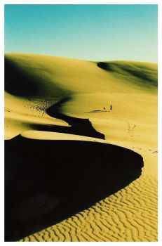 dune by absynthium