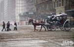 Snow, Horse And Carriage by steeber