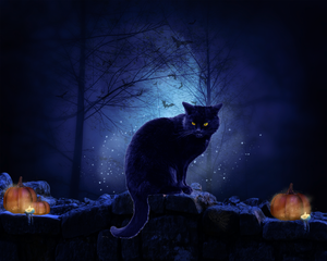 An Halloween Cat - Wallpaper Version by Melanienemo