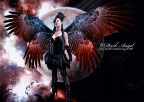 The Dark Angel by Xan-04