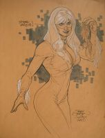 Black Cat C2E2 by TerryDodson