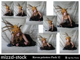 Raven Priestess Pack 12 by mizzd-stock