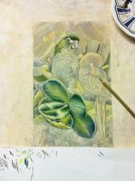Parrots in progress by Heliocyan