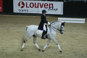 Andalusian dressage trot by EndingStories