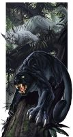 Panthers by BenWootten