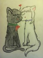 Inuyasha and Kagome - Dog and Cat. by NotSoCuteAndFuzzy