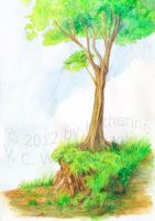 Tree Pencil Test by keight