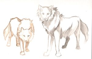 Watercolor Sketch_Wolves2 by jessielp89