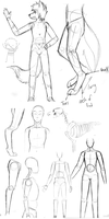 Anatomy Sketches by ShimmiDragon