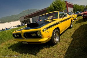 340 Fish by AmericanMuscle