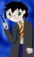 HP: Harry Potter by Malion