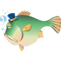 angry fish vector illustration by cgvector