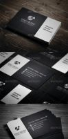 Personal Business Card by vitalyvelygo