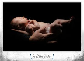 More baby shots by jpdean