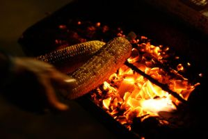 grilled sweet corn by irarodrigues