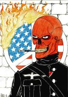 Marvel - Red Skull by alanpedro
