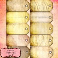 Aged Paper Tags by miabumbag