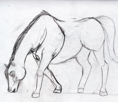 Horse by Kizeal