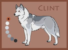 STS's Pale Rider: Clint by Sedillo-Kennels