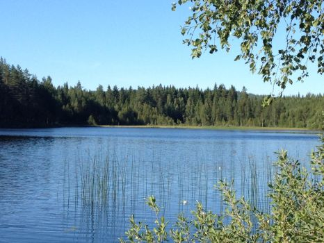 summer day at  lake in sweden by alextheviking