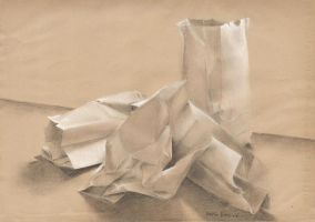 Paper Bags by Zurelle
