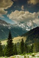 Alps spring 2007 by mutrus