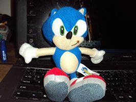 Sonic Plush Again by DazzyDrawingN2