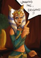 Unhand me, brigand! by Stewjon